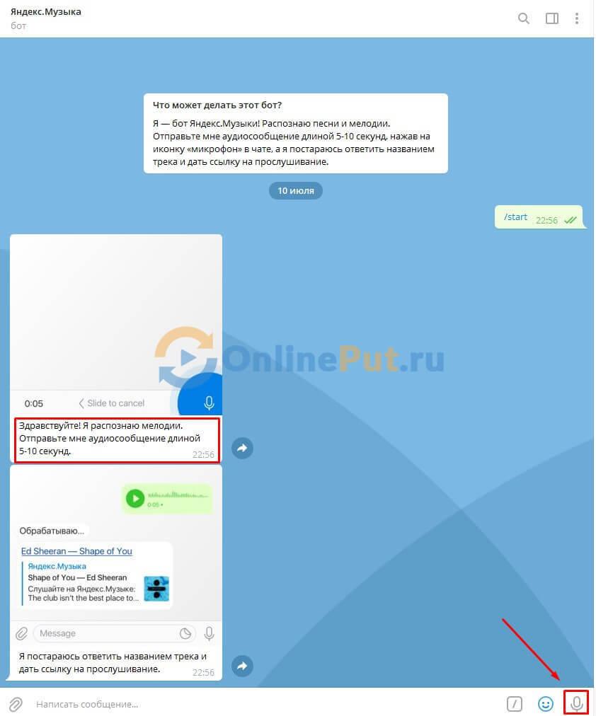 Диалог бота для поиска композиции в telegram